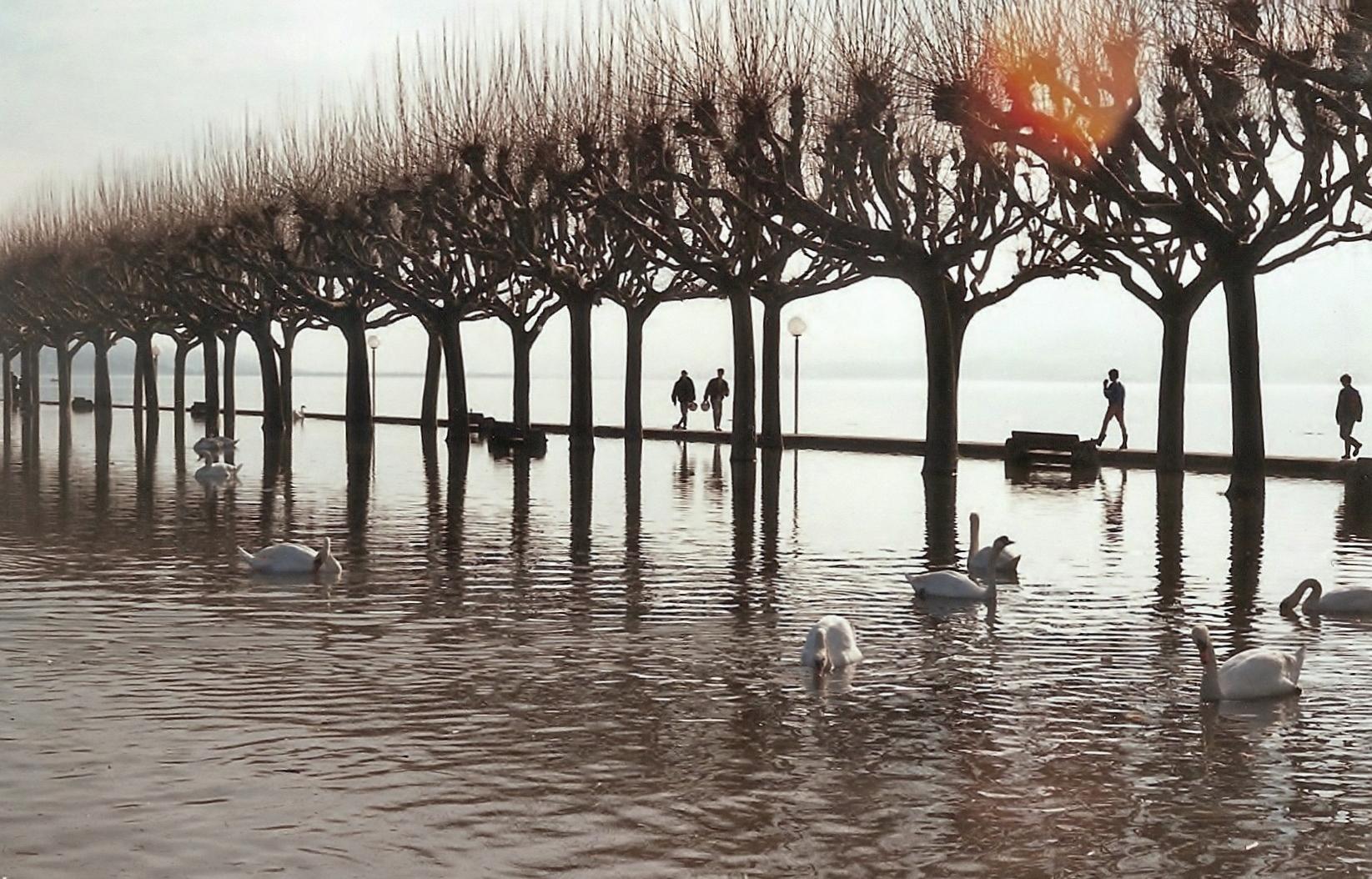 Inondation_lac_du_Bourget_(1990)
